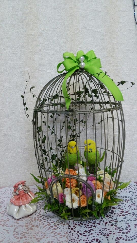 この小鳥達と一緒にお店に居たので、さみしくなります。